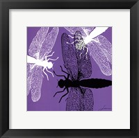 Pop Fly V Framed Print