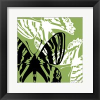 Pop Fly VI Framed Print