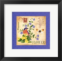 Blooming Garden I Framed Print