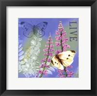 Framed Butterflies Inspire I