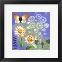 Framed Butterflies Inspire III