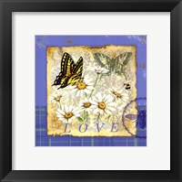 Framed Papillion Plaid I