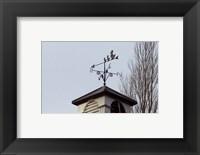 Framed Weathervane on Damerham Village Hall