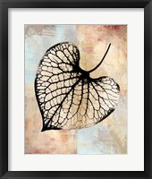 Choc Spice Skel Leaf III Framed Print