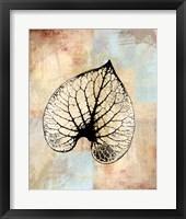 Framed Choc Spice Skel Leaf IV