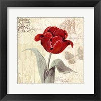 Framed Tulip Gem I