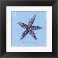Framed Starfish - Blue