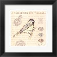 Bird IV Framed Print
