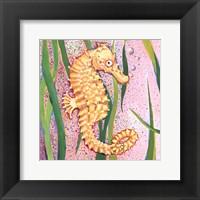 Sea Horse Framed Print