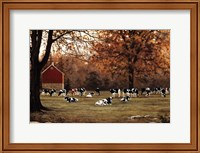 Framed Under the Autumn Oaks