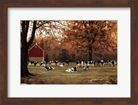 Framed Under the Autumn Oaks