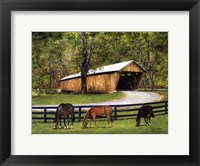 Framed Old Covered Bridge