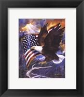 Framed America's Pride