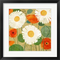 Framed Daisies and Poppies II