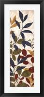 Framed Leaves of Color II
