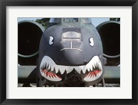 Framed Flying Tigers II