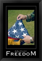 Framed Freedom Affirmation Poster, USAF