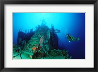 Framed Scuba diver watching a shipwreck underwater