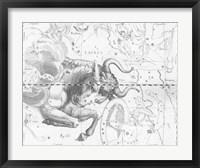 Framed Taurus by Johannes Hevelius