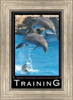Framed Training Affirmation Poster, USAF
