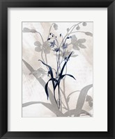 Framed Indigo Bloom III