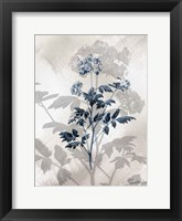 Framed Indigo Bloom II