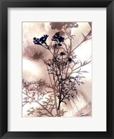 Framed Indigo Bloom I