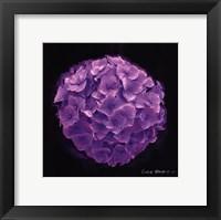 Framed Vibrant Flower I