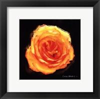 Framed Vibrant Flower II