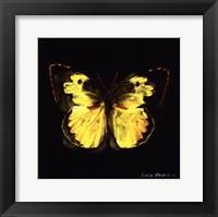Framed Techno Butterfly I
