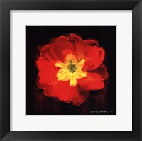 Framed Vibrant Flower IX