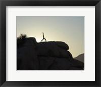 Framed Joshua Tree - Yoga Warrior