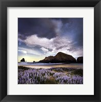 Sweet Illusion Framed Print
