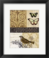 Golden Elegance II Framed Print