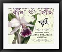 Jardin I Framed Print