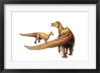 Framed Nipponosaurus