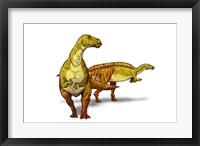 Framed Nanyangosaurus