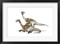 Framed Nanshiungosaurus