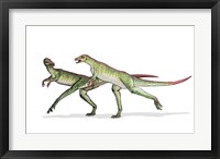 Framed Lesothosaurus