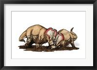 Framed Centrosaurus