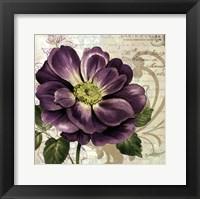 Framed Study in Purple I-mini
