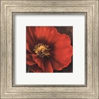 Framed Rouge Poppies I -petite