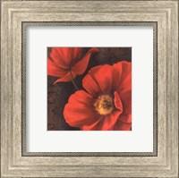 Framed Rouge Poppies II - petite
