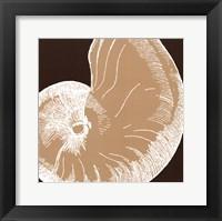 Natural Shell II - mini Framed Print
