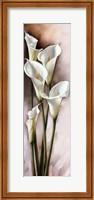 Framed CALLAS GRACIEUX I