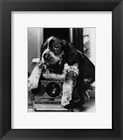 Framed Polaroid