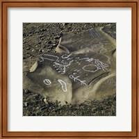 Framed Aboriginal Rock Engraving So. Kolan East Queensland Australia