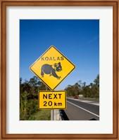Framed Koala sign on the road, Queensland, Australia