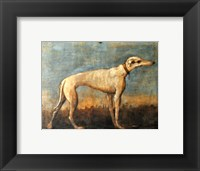 Framed Greyhound, Giandomenico Tiepolo