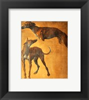 Framed Study of Greyhounds